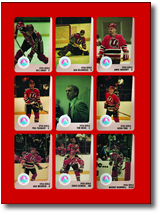Devil of a Hockey Team: The Story of the Utica Devils
